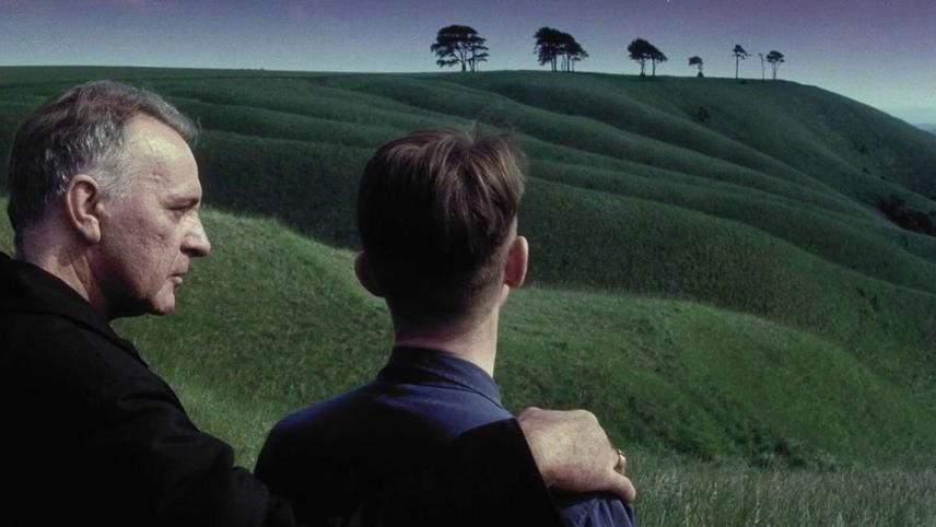 1984-fields