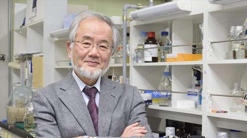 Yoshimori Ohsumi Νόμπελ Ιατρικής 2016