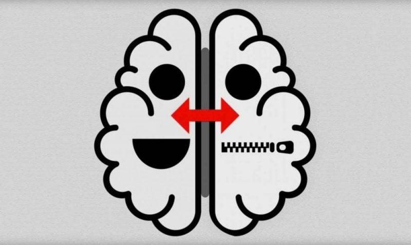 grey-brain