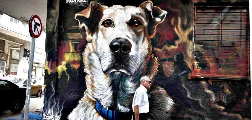 "A man walks past a graffiti of Sausage, a stray dog, painted by street artists Smart, N_Grams and Martinez in Athens...A man walks past a graffiti of Sausage, a stray dog, painted by street artists Smart, N_Grams and Martinez in Athens October 20, 2014. The ginger mongrel called ""Loukanikos"" in Greek, who became famous for appearing at anti-austerity protests and barking at riot police at the height of Greece's debt crisis, has died of a heart attack, local officials said on October 9, 2014. REUTERS/Alkis Konstantinidis (GREECE - Tags: SOCIETY ANIMALS OBITUARY POLITICS)"