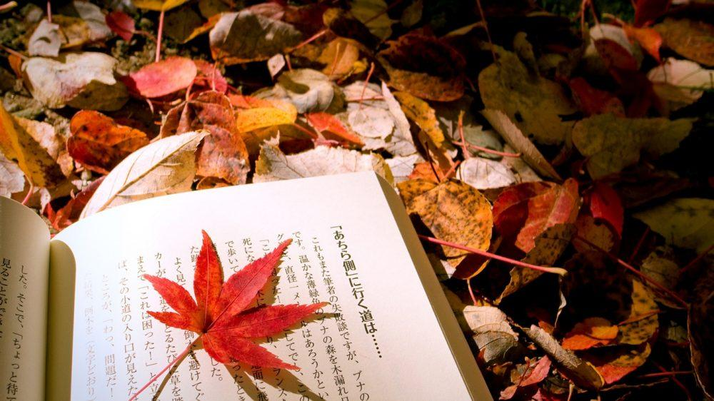 ασιατικής λογοτεχνίας
