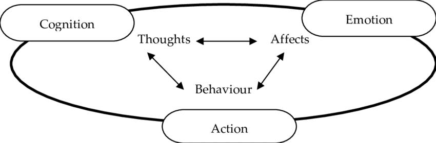 το συναίσθημα επηρεάζει τις γνωστικές μας λειτουργίες
