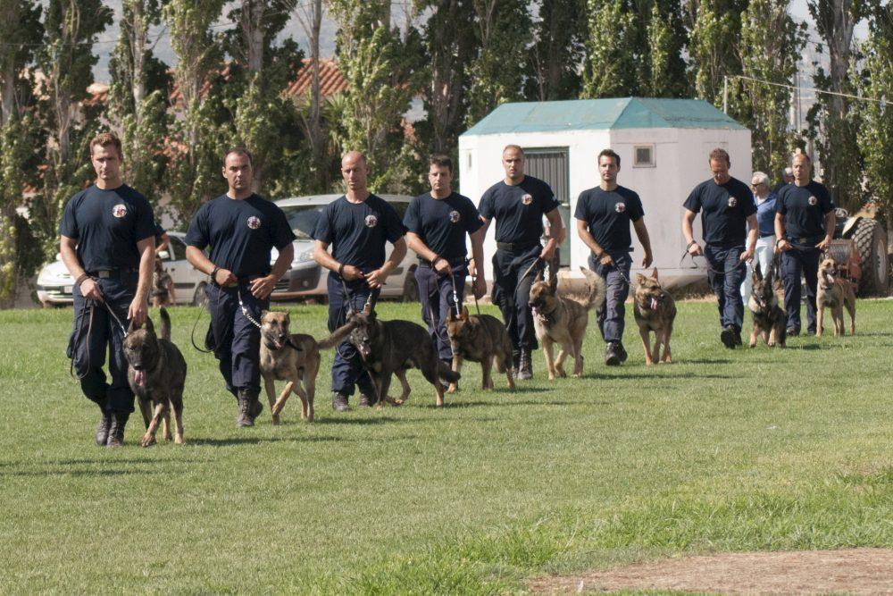Τμήμα Συνοδών Αστυνομικών Σκύλων