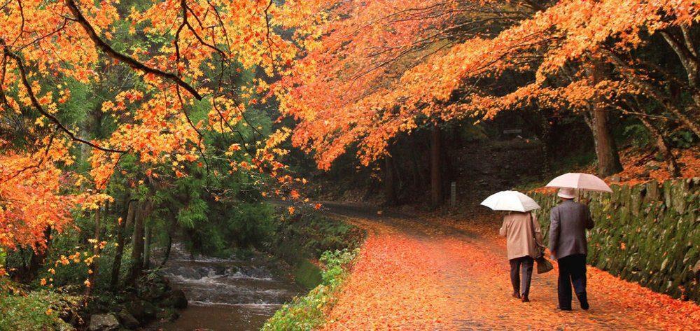 Φθινοπωρινά ταξίδια