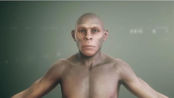 προέλευση του ανθρώπου