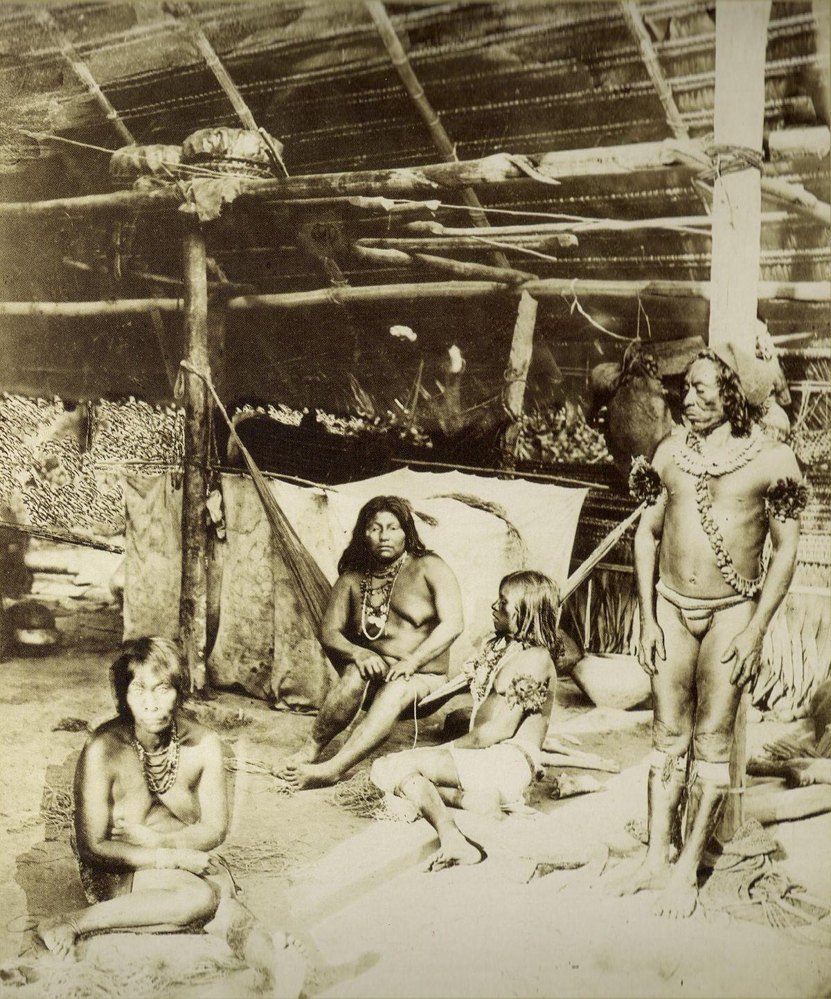 διαφυλικές φυλές