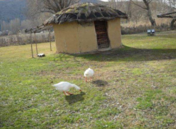 Νεολιθικό σπίτι - Μακρύγιαλος