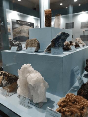 Εκθέματα του μουσείου