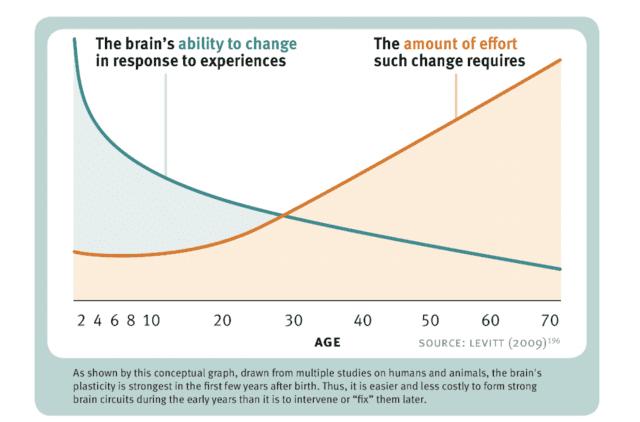 Νευροπλαστικότητα και ηλικία