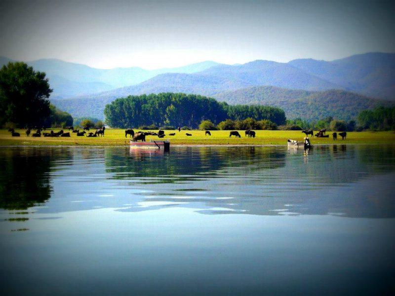 Η λίμνη Κερκίνη Άνω Πορόια