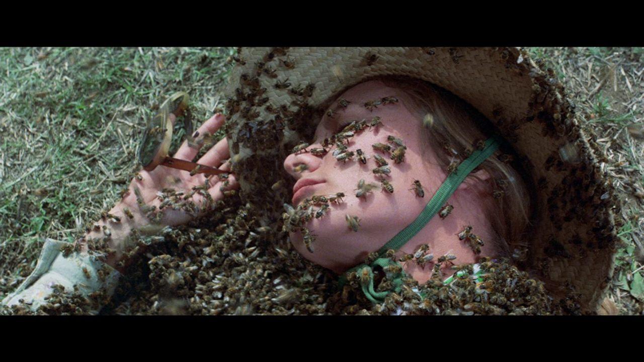 φονικά έντομα
