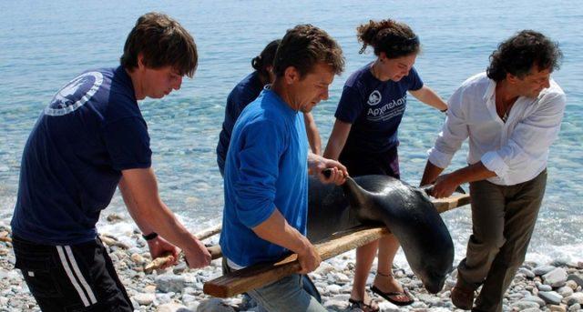 Το πρώτο καταφύγιο θαλάσσιας ζωής βρίσκεται στο Αιγαίο