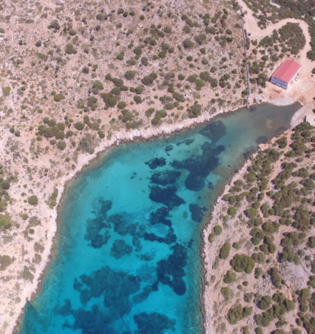 Το μοναδικό καταφύγιο θαλάσσιας ζωής βρίσκεται στο Αιγαίο