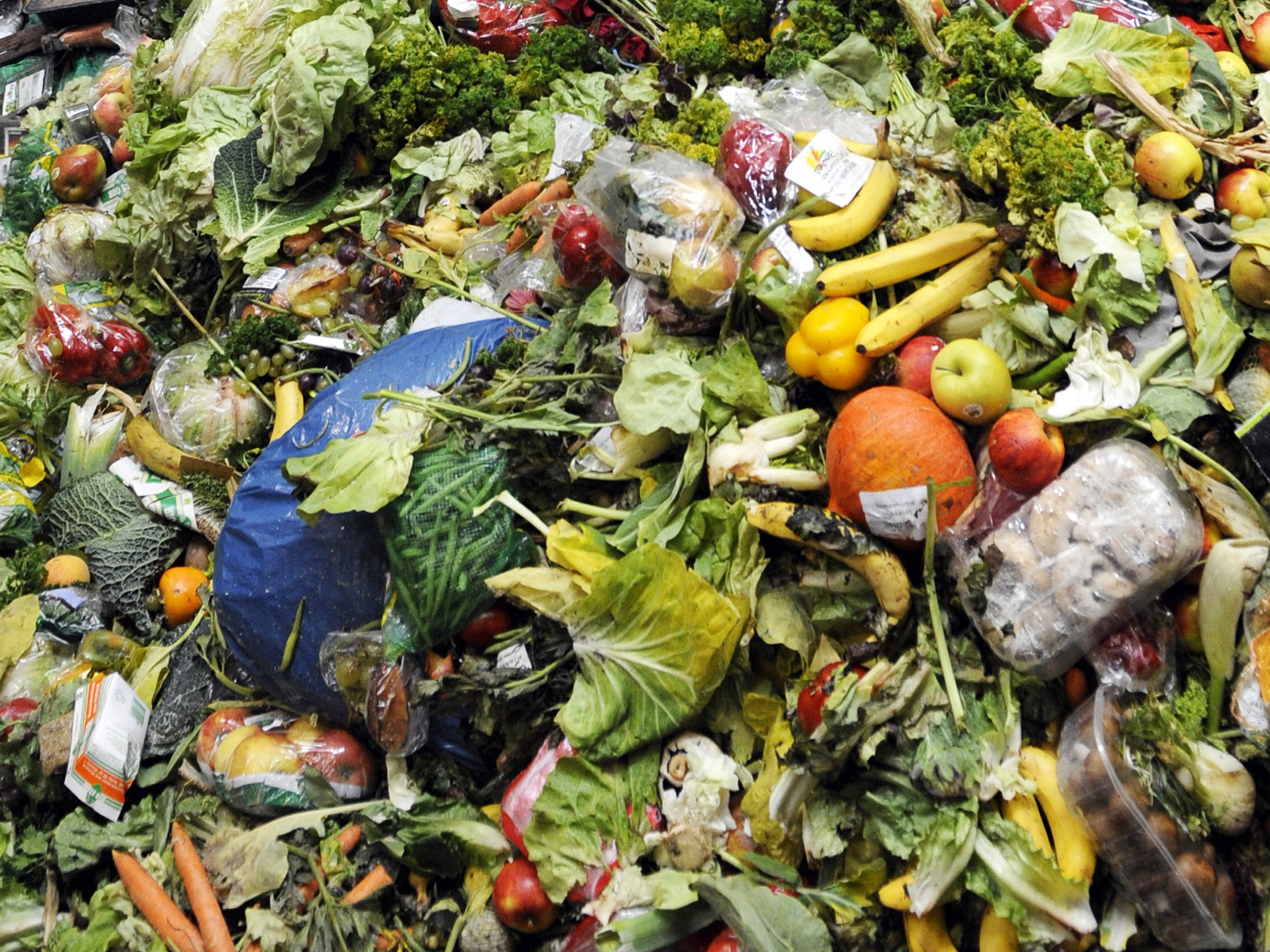 food waste, leftovers
