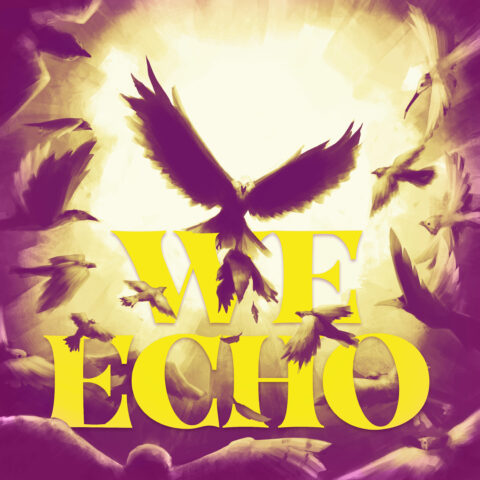 We Echo Cover