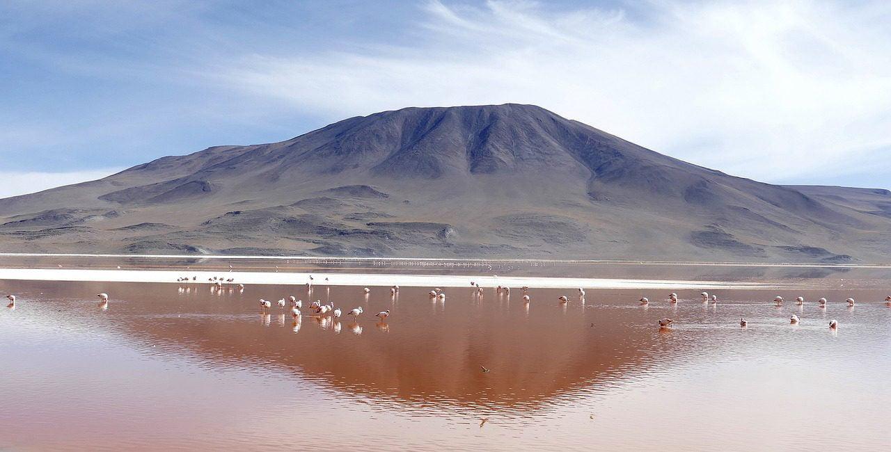 Ροζ λίμνες