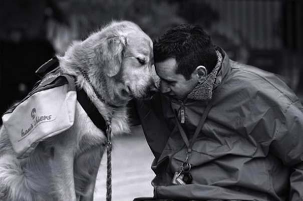 Σκύλος: ο πρώτος σύντροφος του ανθρώπου
