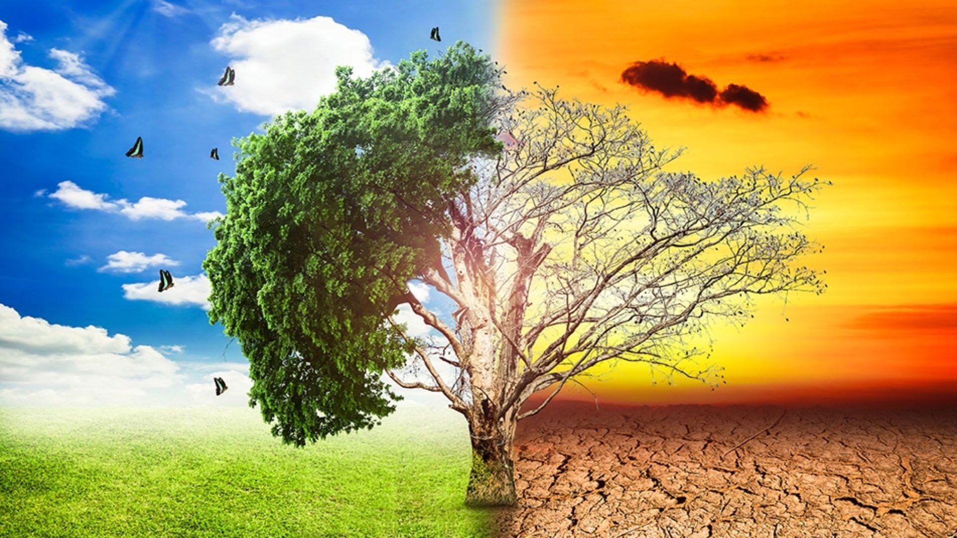 συνέπειες της κλιματικής αλλαγής στα ζώα