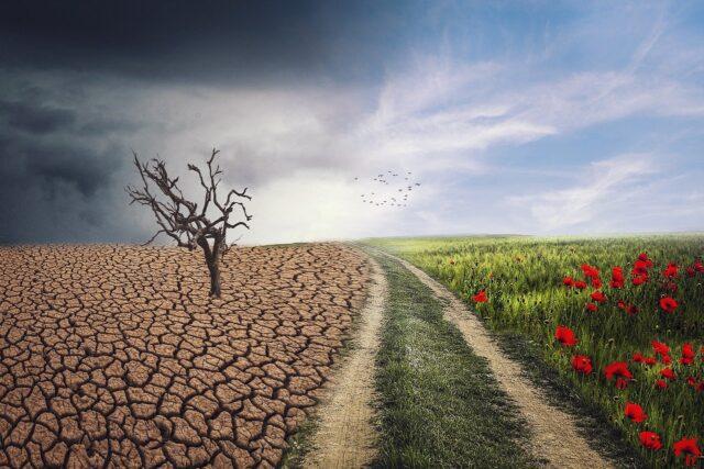 Λειψυδρία: Είναι το νερό στη Wall Street η τελευταία προειδοποίηση;