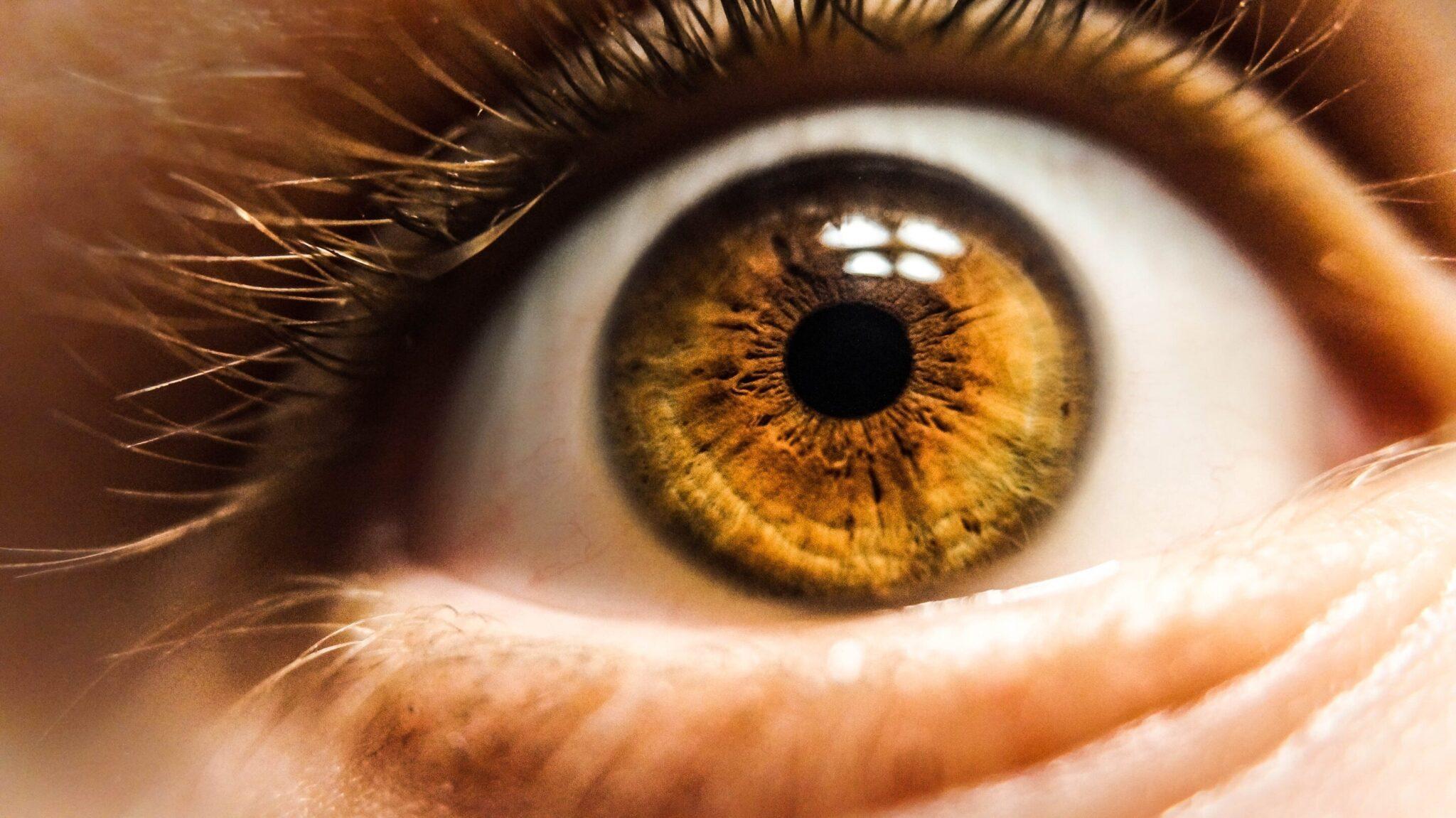 Πρωτοποριακός οπτικός αισθητήρας μιμείται το ανθρώπινο μάτι