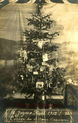 Το δέντρο του Πόντου