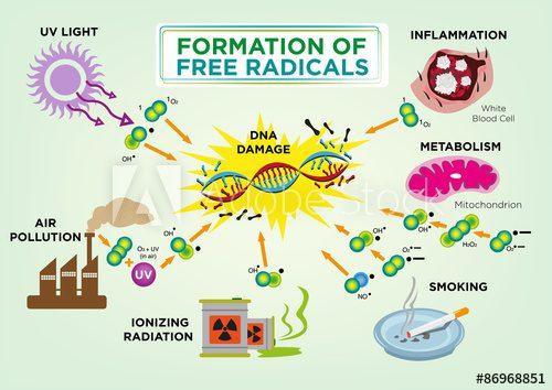 ελεύθερες ρίζες- οξειδωτικό στρες
