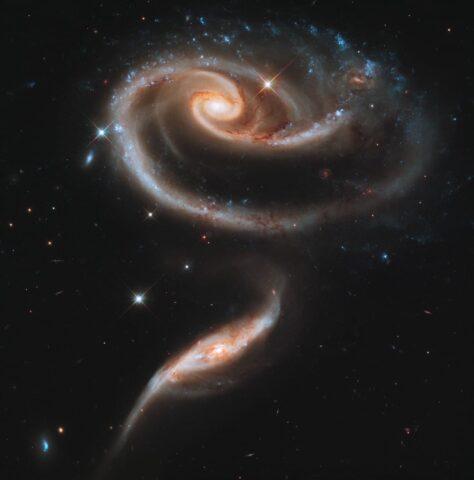 φωτογραφίες NASA Λουλουδι