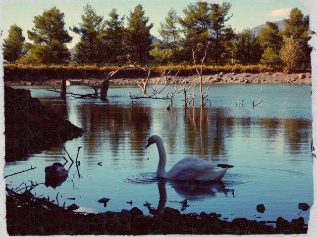 Λίμνη Μπελέτσι