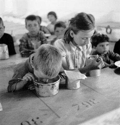 Γεύμα του Ερυθρού Σταυρού