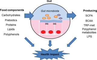 εντερικό μικροβίωμα