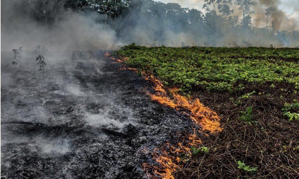 Αμαζόνιος που καίγεται