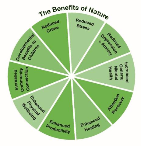 Επαφή με τη φύση